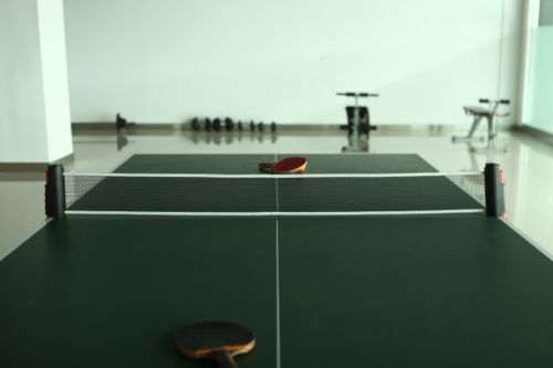Retractable Tables retractable table tennis net - great for dining tables etc